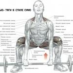Анатомия становой тяги в стиле сумо. Хват прямой