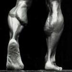 Мышцы голени Криса Дикерсона