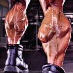 Мышцы голени. Тренировка мышц голени.