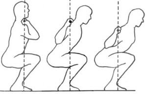 Приседания со штангой. Анатомия