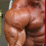 Маркус Рул Дельтовидные мышцы