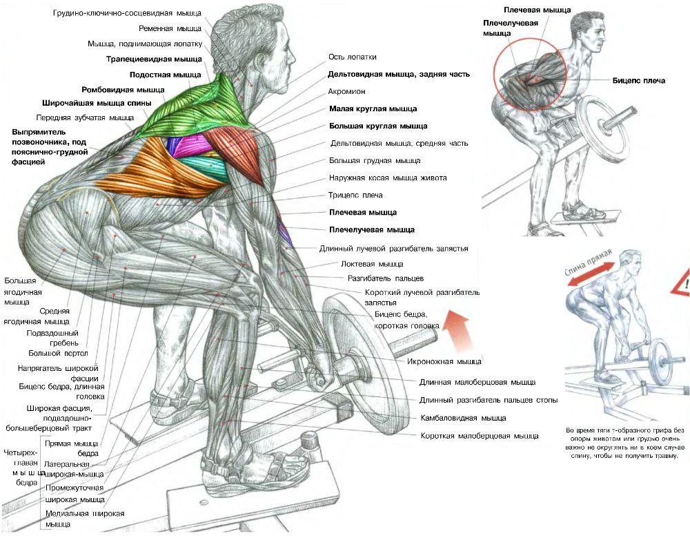 программа тренировок для похудения ног