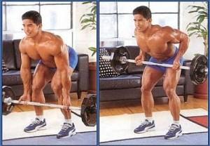 Широчайшие мышцы Тяга штанги в наклоне обратным хватом