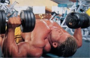 Жим гантелей лежа на горизонтальной скамье Тренировка груди