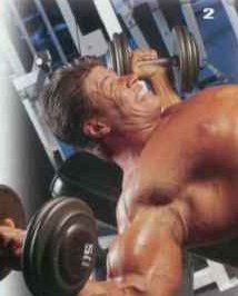 Тренировка верхней груди Разведение рук на наклонной скамье с гантелями