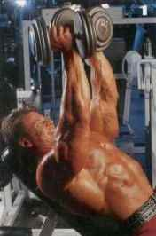 Тренировка верха груди Разведение рук на наклонной скамье