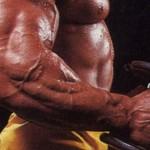 Гуннар Росбо, предплечье 52 см, самое большое предплечье в мире