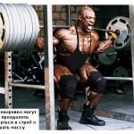 Ronnie Coleman Ронни Колеман, приседания со штангой на плечах, бодибилдинг, сильные ноги, набор мышечной массы, тренировка спины, бедер и ягодиц