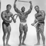 Frank Zane, Sergio Oliva, Chuck Sipes, представители золотой эры бодибилдинга