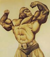 Физическая сила человекообразных обезьян. Горилла бодибилдер